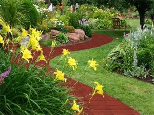 landscape red garden